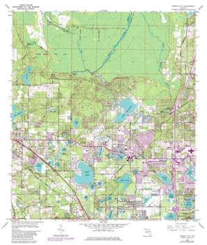 Forest City USGS topographic map 28081f4