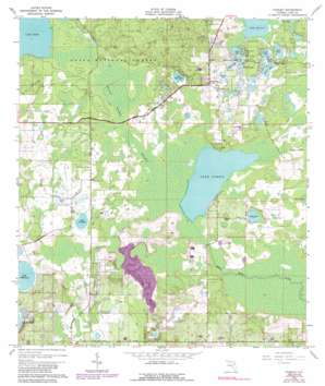 Paisley USGS topographic map 28081h5