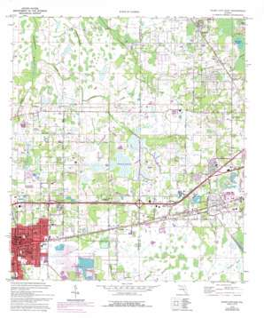 Tarpon Springs / Plant City USGS topographic map 28082a1