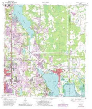 Oldsmar USGS topographic map 28082a6