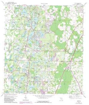 Lutz topo map