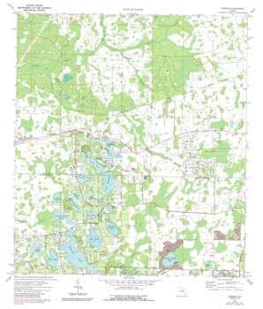 Odessa topo map