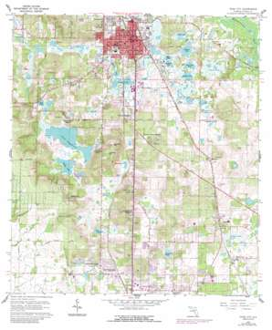 Dade City USGS topographic map 28082c2
