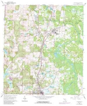 Lacoochee topo map