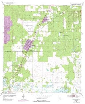 Masaryktown topo map