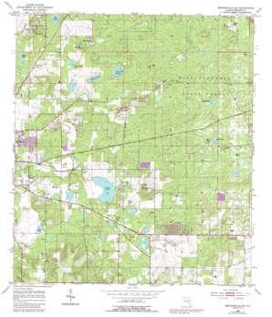 Brooksville Se topo map