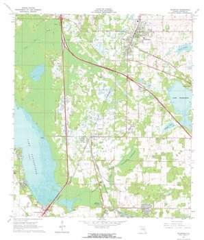 Wildwood topo map