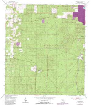 Lecanto USGS topographic map 28082g4