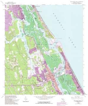 New Smyrna Beach USGS topographic map 29080a8
