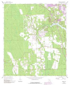Samsula USGS topographic map 29081a1