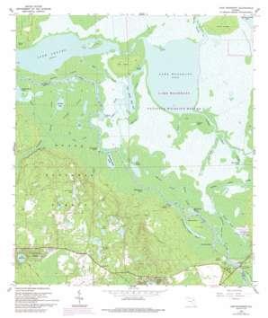 Lake Woodruff topo map