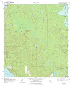 Alexander Springs USGS topographic map 29081a5