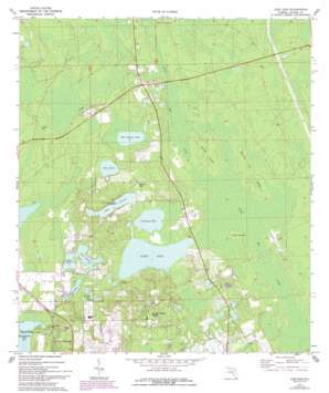 Lake Dias USGS topographic map 29081b3