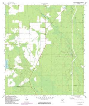 Codys Corner USGS topographic map 29081c3