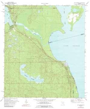 Salt Springs USGS topographic map 29081c6