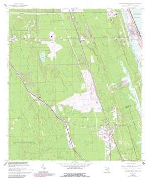 Flagler Beach West USGS topographic map 29081d2