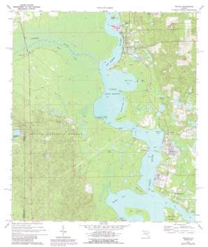 Welaka USGS topographic map 29081d6