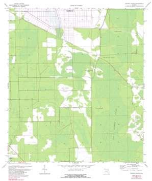 Dinner Island USGS topographic map 29081e4