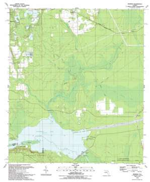 Rodman USGS topographic map 29081e7
