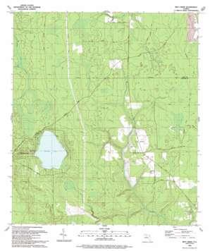 Rice Creek USGS topographic map 29081g7
