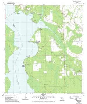 Picolata topo map