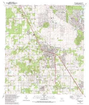 Belleview topo map