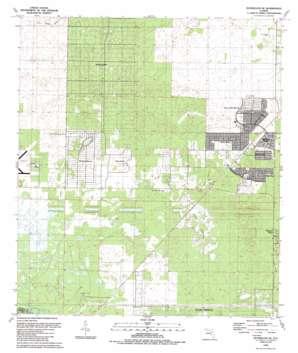 Dunnellon Se USGS topographic map 29082a3