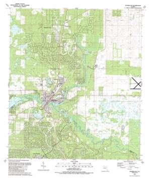 Dunnellon topo map