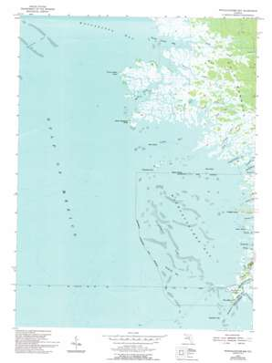 Withlacoochee Bay USGS topographic map 29082a7