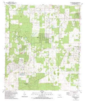 Cotton Plant USGS topographic map 29082b3