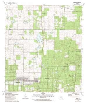 Romeo USGS topographic map 29082b4