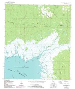 Waccasassa Bay USGS topographic map 29082b7
