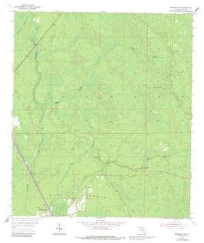 Bronson Sw topo map
