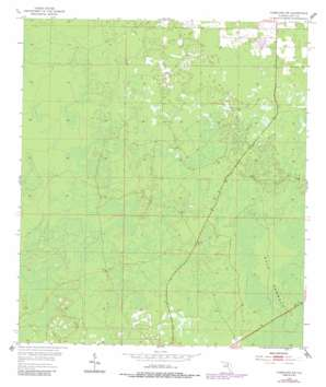Chiefland Sw topo map