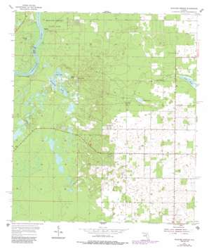Manatee Springs USGS topographic map 29082d8