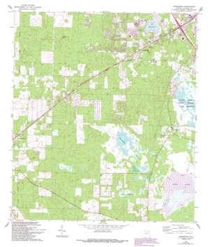 Arredondo USGS topographic map 29082e4