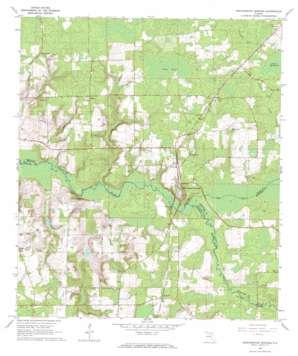 Worthington Springs USGS topographic map 29082h4
