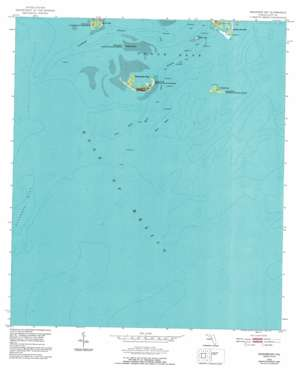 Seahorse Key USGS topographic map 29083a1