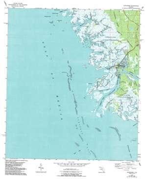Suwannee topo map