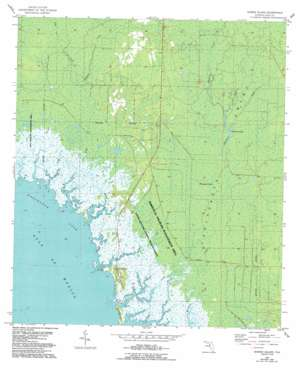 Shired Island USGS topographic map 29083d2