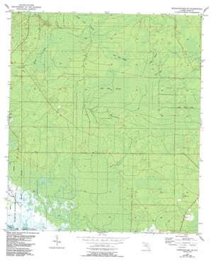Steinhatchee Se topo map