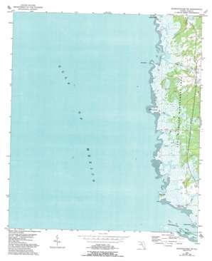 Steinhatchee Sw USGS topographic map 29083e4