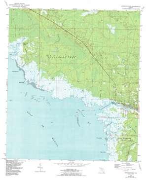 Steinhatchee USGS topographic map 29083f4
