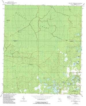 Mallory Swamp Se topo map