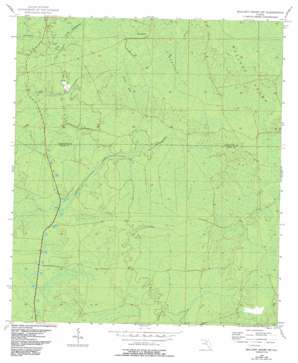Mallory Swamp Sw USGS topographic map 29083g2