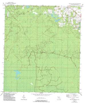 Mallory Swamp Ne USGS topographic map 29083h1