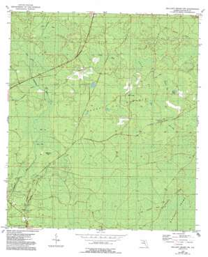 Mallory Swamp Nw USGS topographic map 29083h2