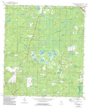 Warrior Swamp USGS topographic map 29083h5