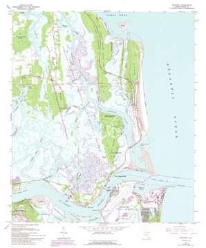 Mayport topo map