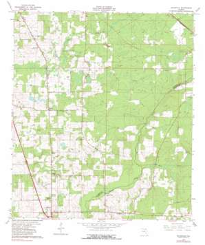 Ellisville topo map
